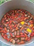 小龙虾煮沸 库存图片