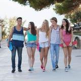 小组不同的十几岁在度假 免版税库存图片