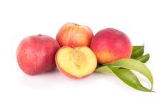 小组与叶子的新鲜的桃子 免版税库存照片
