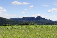 小组与蓟的岩石Schrammsteine和Falkenstein在撒克逊人的瑞士调遣 图库摄影