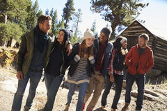 小组六个朋友步行通过客舱在森林里,低角度 免版税库存图片