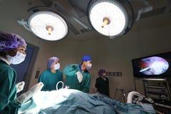 小组兽医腹腔镜外科的医生运转中室 免版税图库摄影