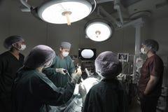 小组兽医腹腔镜外科的医生运转中室 图库摄影