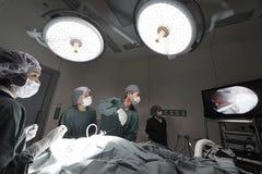 小组兽医腹腔镜外科的医生运转中室 库存照片