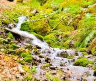 小移动的小河 库存图片