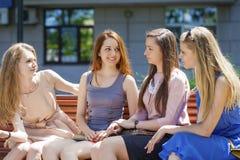小组四个少妇坐长凳在夏天公园 免版税库存照片