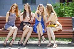 小组四个少妇坐长凳在夏天公园 免版税库存图片