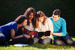 小组圣经研究 免版税库存照片