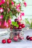 小组在一个玻璃瓶子的新鲜的水多的甜樱桃 食物自然有机 免版税库存照片