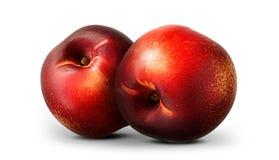 小组在白色的油桃桃子 库存图片
