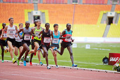 小组在赛马跑道的赛跑者 免版税库存照片