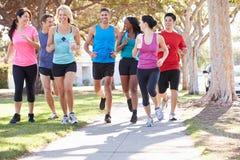 小组在郊区街道上的赛跑者 库存图片