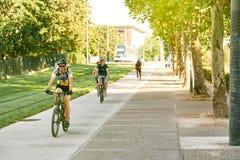 小组年轻嬉戏男孩骑马自行车在晴天 库存图片
