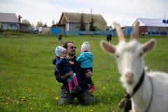 小婴孩孪生与他们的父亲在山羊附近 库存图片