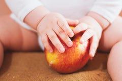 小婴孩拿着红色苹果 免版税库存照片