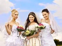 小组室外新娘和新郎的夏天。 免版税库存图片