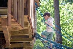 小登山人采取索桥 男孩有乐趣时间,上升在晴朗的温暖的夏日的孩子 免版税库存图片
