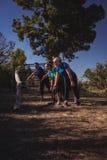 小组投掷一本重的木日志的适合妇女在障碍桩训练期间 免版税库存图片