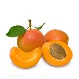 小组新鲜的成熟杏子 免版税图库摄影