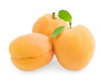 小组新鲜的成熟杏子 免版税库存图片