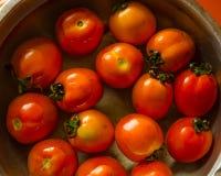 小组新鲜的蕃茄在水中 免版税库存图片