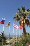 小组旗杆和棕榈树 免版税库存图片