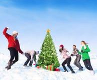 小组朋友获得乐趣在雪 库存图片