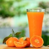小组桔子和汁液 库存图片