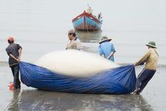 小组渔夫拉扯鱼网 免版税库存图片
