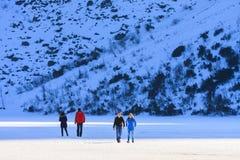 小组游人在冻Morskie Oko湖,波兰走 库存照片