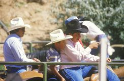 小组牛仔,部落间的礼仪印地安圈地 免版税库存图片