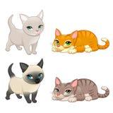 小组用不同的颜色的逗人喜爱的猫 库存照片
