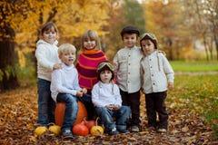 小组秋天画象愉快的孩子,室外 库存照片