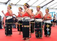 小组从种族的Murut的老人进行一个传统舞蹈 免版税库存照片