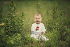 小滑稽的男孩用草莓 库存图片