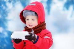 小滑稽的男孩画象获得红色冬天的衣裳的与冰片断的乐趣  免版税图库摄影