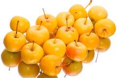 小黄色苹果 免版税库存照片