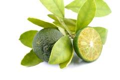 小组绿色calamansi和叶子使用而不是在白色背景隔绝的柠檬 库存照片