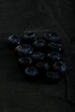 小组蓝莓黑暗的照片宏指令特写镜头 库存图片