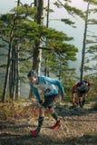 小组年轻赛跑者在杉木森林里跑上升 免版税库存照片