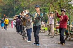 小组越南前辈实践太极拳 免版税库存照片