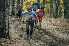 小组运动员赛跑者艰难边在森林 免版税库存图片