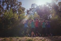 小组运载一本重的木日志的适合妇女在障碍桩训练期间 库存照片