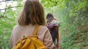 小组远足迁徙在密林的人 抚养走在与背包的艰苦跋涉的年轻Hispters后面看法通过密集 股票录像