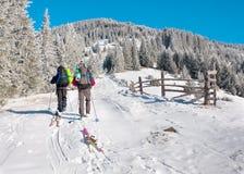 小组滑雪者上升上升 免版税图库摄影