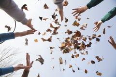 小组青年人投掷的叶子 库存照片