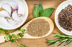 小茴香、迷迭香和其他香料在木背景 免版税库存照片