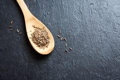 小茴香籽 免版税图库摄影