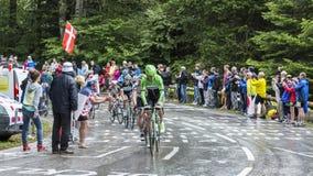 小组骑自行车者-环法自行车赛2014年 库存照片