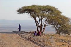 小组Maasai在金合欢树下 免版税库存照片